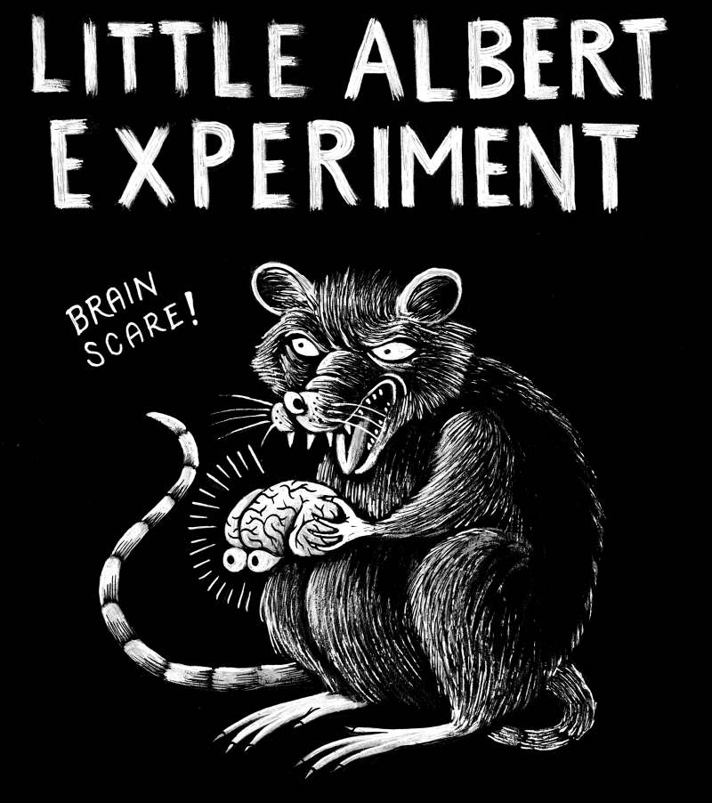 The Little Store >> Little Albert Experiment - Matteo Farinella